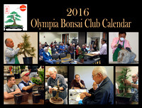 Olympia Bonsai Club - April, 2015 Calendar Shoot