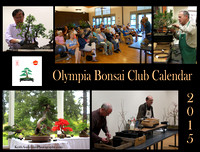 Olympia Bonsai Club